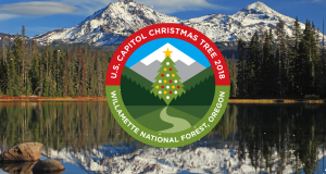 McKenzie River - Judy Casad - Christmas Tree - Family Fun